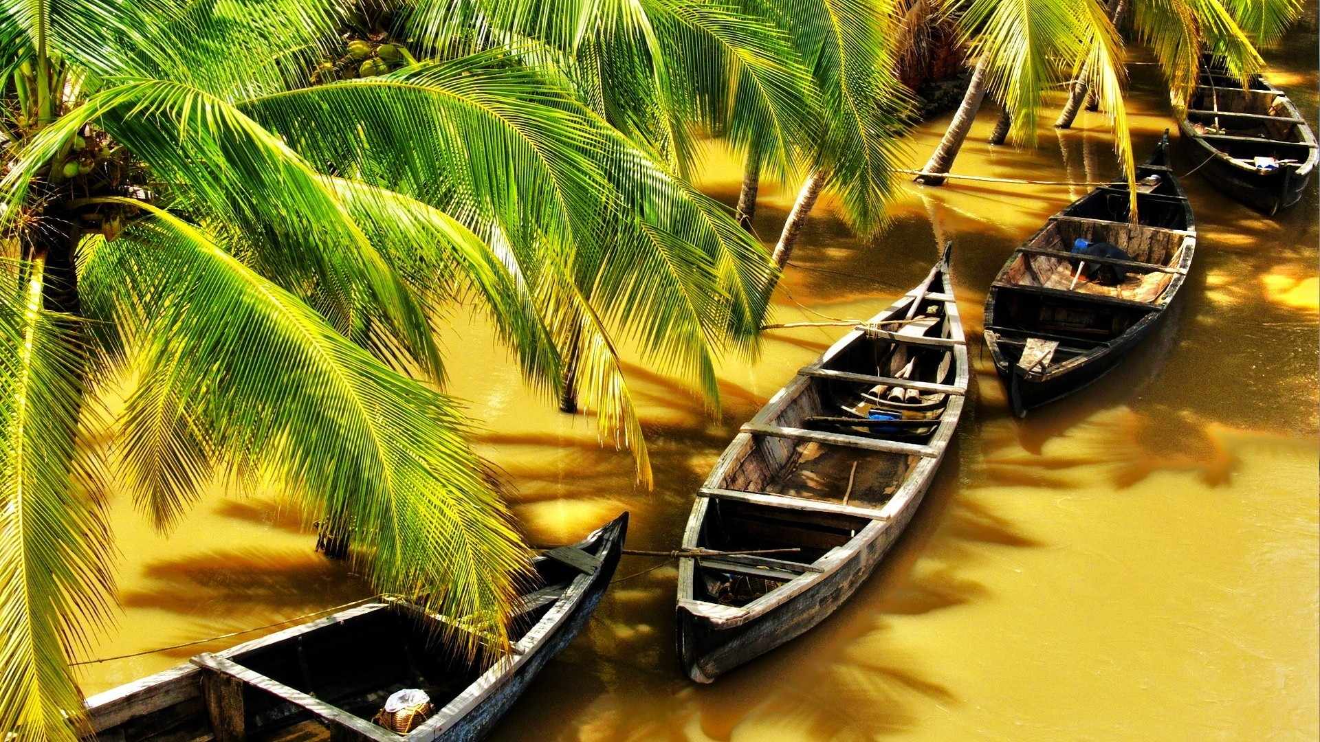 Memorable Kerala Tour Package