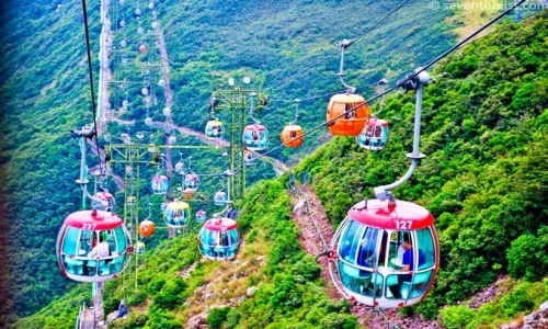 Hong Kong with Ocean Park Tour Package